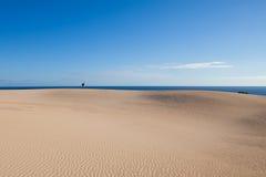 Deserto e dune fotografia stock