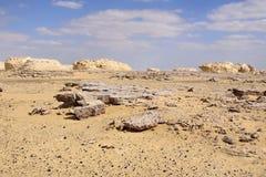 Deserto e manganese bianchi fotografia stock libera da diritti