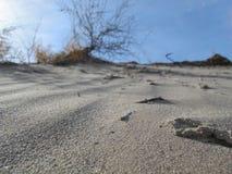 Deserto em Ásia central Fotografia de Stock