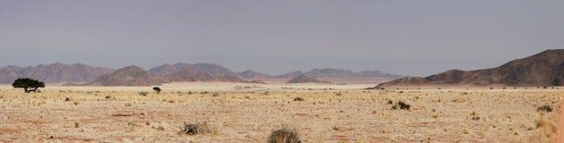 Deserto em Namíbia Imagens de Stock