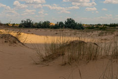 Deserto entre os campos Fotografia de Stock