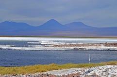 Deserto faz Atacama Fotografia de Stock