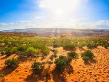 Deserto a ferro di cavallo della curvatura Fotografia Stock Libera da Diritti