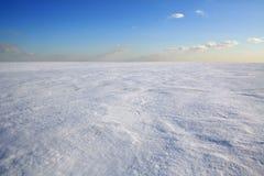 Deserto freddo Fotografia Stock