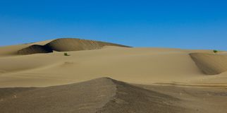 Deserto Gobi Fotografie Stock