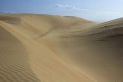 Deserto IV Fotografia Stock