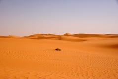 Deserto líbio Imagens de Stock Royalty Free