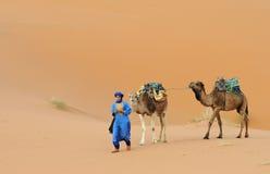 Deserto marroquino 10 Foto de Stock Royalty Free