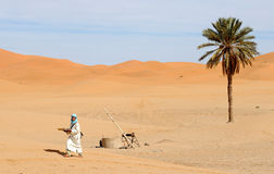 Deserto marroquino 12 Foto de Stock Royalty Free