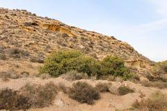 Deserto mediterrâneo Rocky Ecology árido imagens de stock
