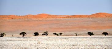Deserto Namíbia Foto de Stock