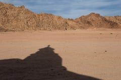 Deserto nell'Egitto Fotografie Stock Libere da Diritti