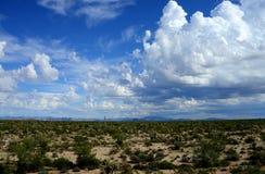 Deserto o Arizona do Sonora foto de stock