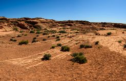 Deserto perto da curvatura em ferradura de Grand Canyon, página, o Arizona Imagens de Stock Royalty Free