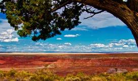 Deserto pintado no Arizona fotos de stock royalty free