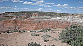 Deserto pintado no Arizona fotografia de stock royalty free