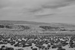 Deserto preto e branco sem algum vivo fotografia de stock royalty free