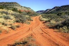 Deserto Road Fotografia de Stock Royalty Free