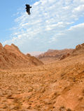 Deserto rochoso Fotografia de Stock Royalty Free