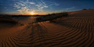 Deserto sabbioso di panorama al tramonto di estate Immagine Stock