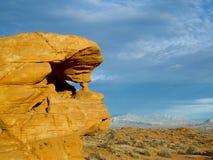 Deserto Sentinal Fotos de Stock Royalty Free