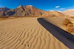 Deserto su cielo blu Fotografia Stock
