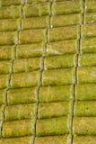 Deserto tradizionale turco al mercato Immagini Stock