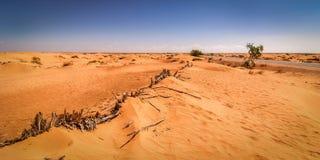 Deserto Tunisia Fotografie Stock