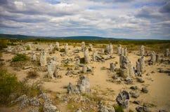 Deserto Varna Bulgaria della pietra di Forest The della pietra di Pobiti Kamani Immagine Stock