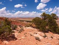 Deserto vermelho Fotografia de Stock Royalty Free