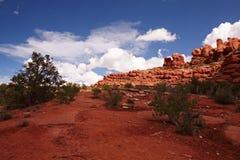 Deserto vermelho Foto de Stock Royalty Free
