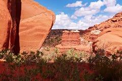 Deserto vermelho Fotos de Stock Royalty Free