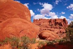 Deserto vermelho Imagem de Stock