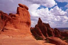 Deserto vermelho Imagens de Stock