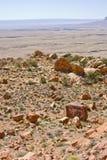 Deserto vermelho das rochas Fotos de Stock Royalty Free
