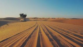 Deserto vicino ad Abu Dhabi, Emirati Arabi Uniti Fotografie Stock Libere da Diritti