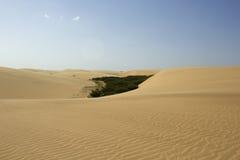Deserto VIII Fotografia Stock Libera da Diritti
