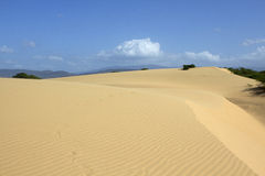 Deserto XI Immagini Stock Libere da Diritti