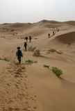 Deserts Stock Photos