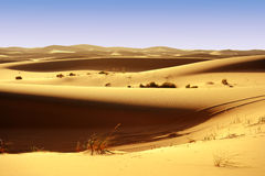 Deserts dune Royalty Free Stock Photo