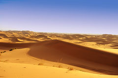 Deserts dune Royalty Free Stock Photos