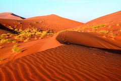 The Deserts in Oman Stock Image
