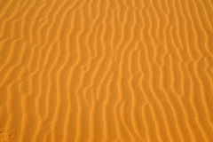 Deserts Stock Images