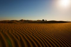 Desertscape ripped. The untamed desert sand lines . No footprints. unexplored lands. Harsh landscape Royalty Free Stock Photos