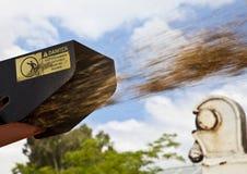 Desfibradora del árbol en la acción Imagen de archivo libre de regalías