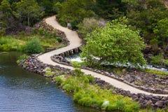 Desfiladeiro da catarata, Tasmânia foto de stock