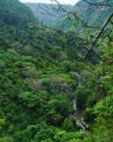 Desfiladeiro da montanha da reserva natural de Krantzkloof Imagem de Stock Royalty Free