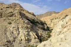 Desfiladeiro de Ein Gedi no deserto de Judea. imagem de stock
