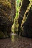 Desfiladeiro de Oneonta no desfiladeiro do Rio Columbia imagem de stock royalty free