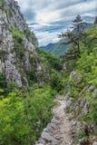 Desfiladeiro de Tasnei Foto de Stock Royalty Free